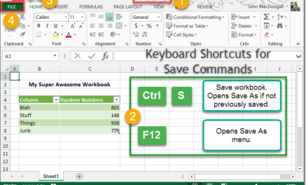 Saving Your Workbook